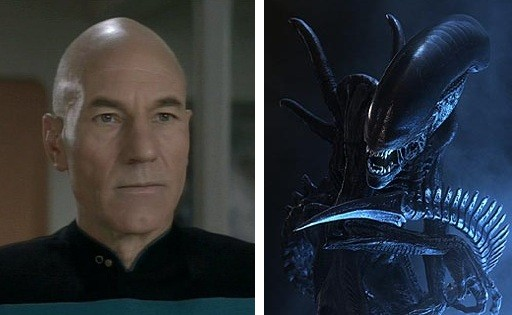Picard-Alien Cranium