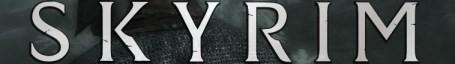 Skyrim In-Game Banner