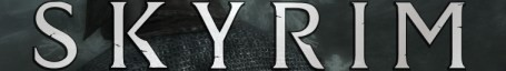 Skyrim In-Game Banner
