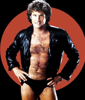 The Hoff Speedo